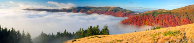 fog-autumn-carpathians-golden-cold-often-turns-snow-then-again-come-warm-sunny-days-against-background-high-66224764 (1)